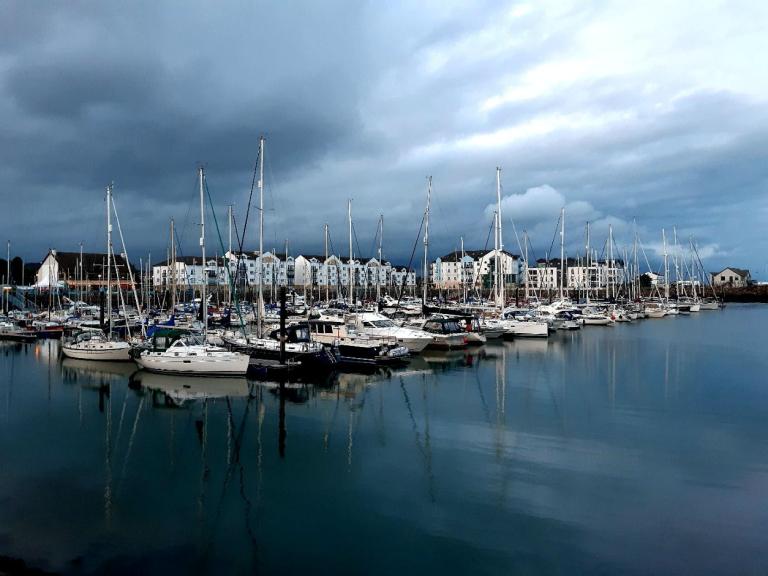 Boats in a marina under a moody sky